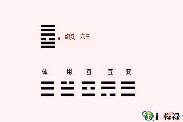 六爻动爻详解大全
