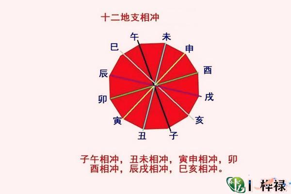 六爻冲的表现方式